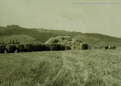 Gorbea-Familia-Lovengreen-Van-der-Meude-Agricultura-003