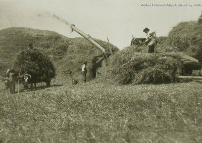 Gorbea-Familia-Sabugo-Canseco-Agricultura-002