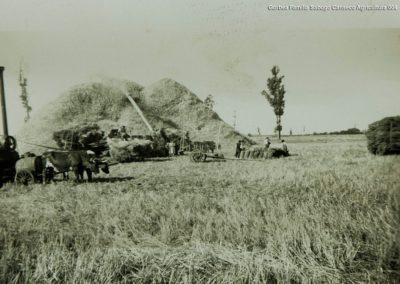 Gorbea-Familia-Sabugo-Canseco-Agricultura-004