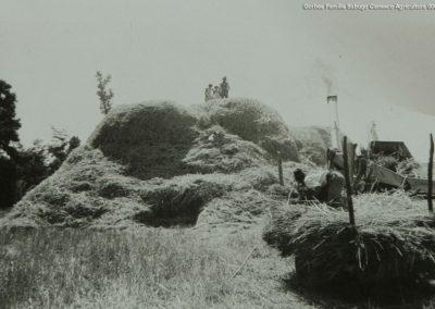 Gorbea-Familia-Sabugo-Canseco-Agricultura-006
