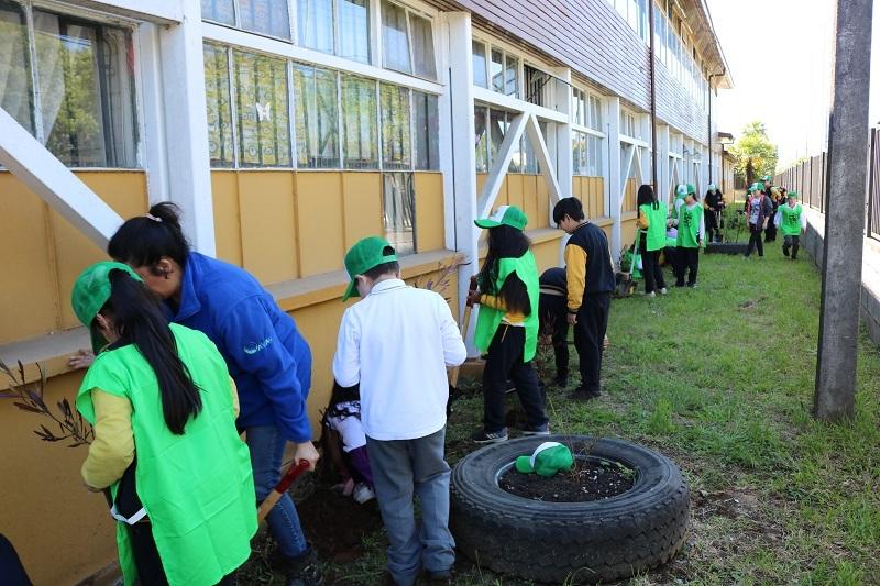 Brigada ambiental de escuela Cinco junto a Programa Medioambiental de la Municipalidad realizan plantación de biodiversidad en el establecimiento